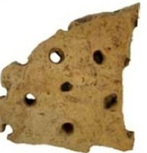 primitivecheeseshard