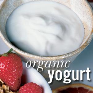193_yogurt300