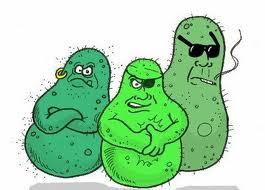 Badboysbacteria