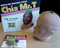 Mr. T Chia