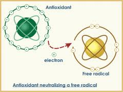 radicalantioxidant