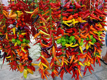 rista-hot-peppers