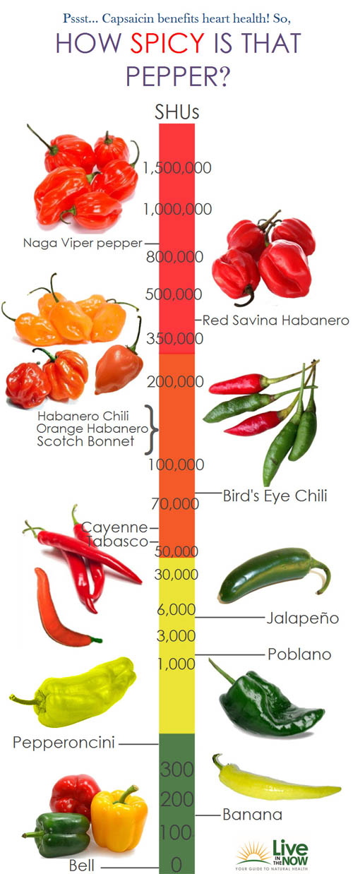 spicy-pepper-chart-of-hotness