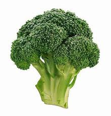 broccoli-cruciferous-family