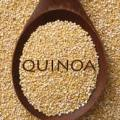 quinoa-seeds-raw-logo