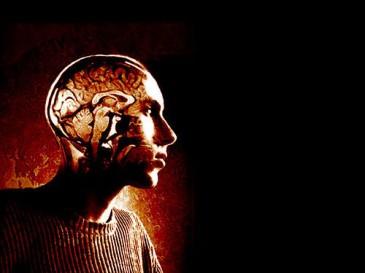 brain-renovation-guy-exposed-brain