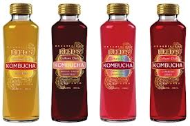 kombucha-fermented-tea-functional-product-vinegar