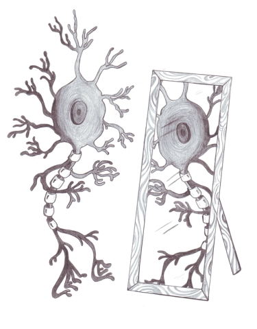 one-neuron-looking-at-mirror-image-of-itself-in-mirror