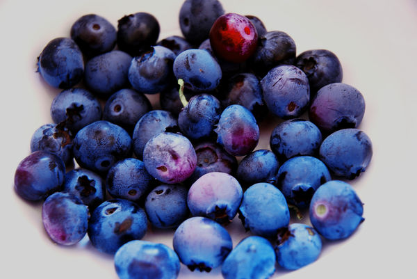 plain-blueberries-Renovating-Your-Mind-superfood-