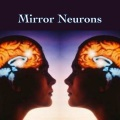 Renovating-Your-Mind-explains-mirror-neurons