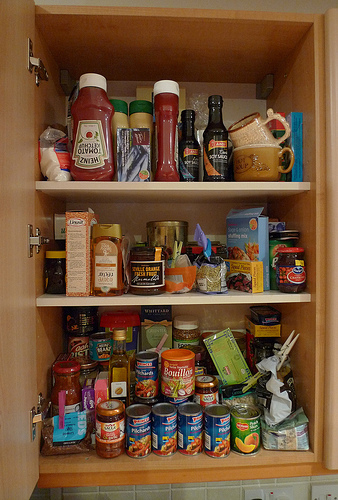 Image Result For Basic Kitchen Cabinetsa
