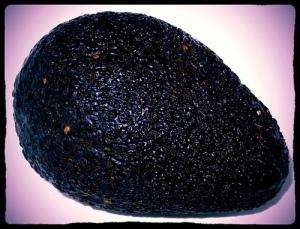 hass-avocado-black-bumpy-skin