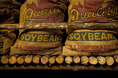 pictures-of-sacks-filled-with-soybeans