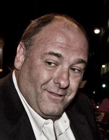 Renovating-Your-Mind-ponders-if-james-gandolfini-got-hypothermia-therapy-would-he-still-be-alive