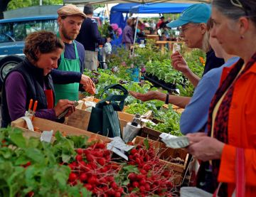 farmers-market-maine