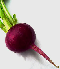 picture-of-a-lonely-beet
