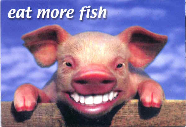 pig-smiling-with-eat-fish