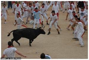 running-of-bulls-spain