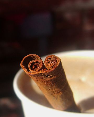 whole-cinnamon-stick-coming-out-of-mug-of-hot-chocolate