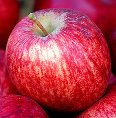 apple-fruit-without-chemicals-certified-organic