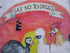 birds-turkey-chicken-saying-no-to-drugs-sign-like-they have a choice-when-it-is-part-of-their-feed