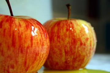 RENOVATING-YOUR-MIND-does-produce-pic-of-2-wet-shiny-apples-delicious-maybe-not