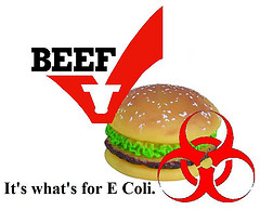 burger-beef-contamination-with-ecoli